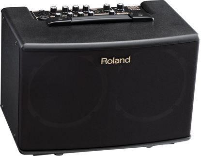 Roland AC-40 Acoustic Chorus Guitar Amplifier (AC40)