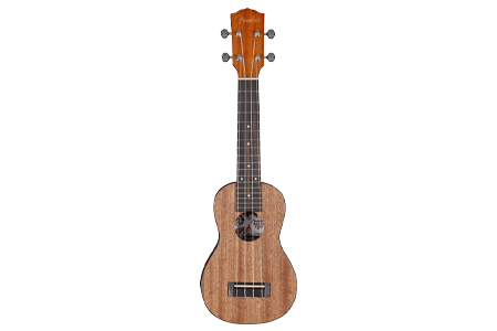 Picture for category Ukuleles