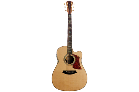 Picture for category Premium Acoustic Guitars
