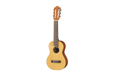 Small/Travel Acoustic Guitars