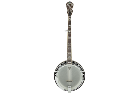 Picture for category Banjos
