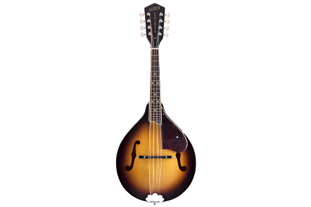 Picture for category Mandolins
