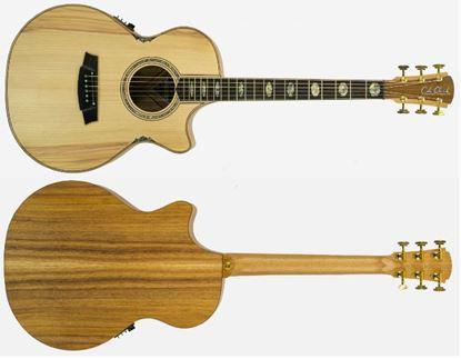 Cole Clark Angel 3 Series Acoustic Guitar (Bunya/Blackwood)