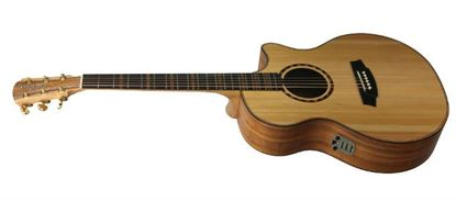 Cole Clark Talisman Angel Acoustic Guitar with Pickup and Cutaway