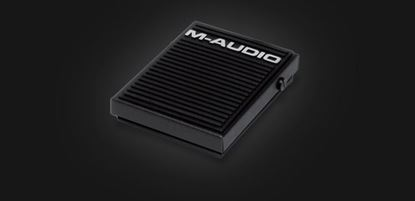 Picture of M-Audio SP-1 Sustain Pedal