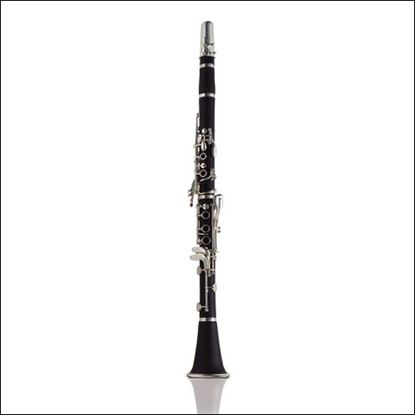 Ashton CL10 Clarinet