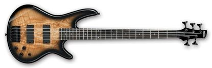Ibanez SR205SM NGT SR Series 5-String Bass Guitar Natural Gray Burst