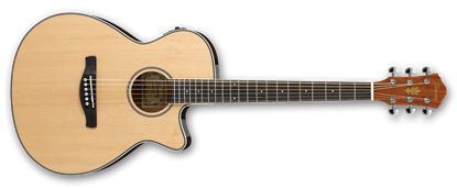 Ibanez AEG8E NT Acoustic Guitar w P/up Natural