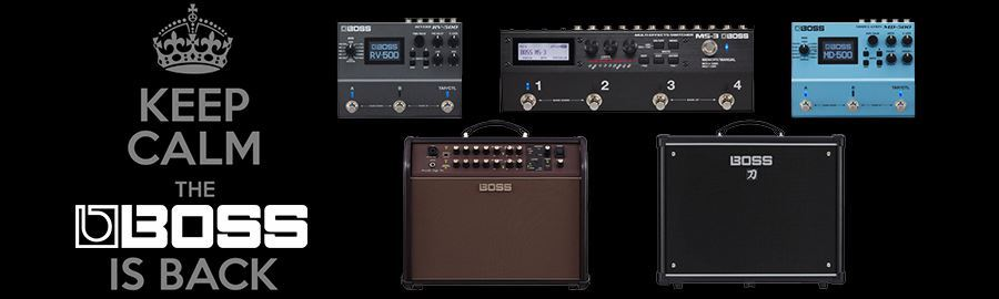 BOSS Effects and Amplifiers In Stock
