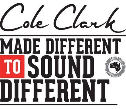 Cole Clark Fat Lady 3 Series Acoustic Guitar (Cedar of Lebanon/Rosewood)