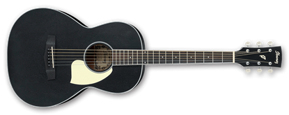 Ibanez PN14-WK Parlor Acoustic Guitar in Weathered Black