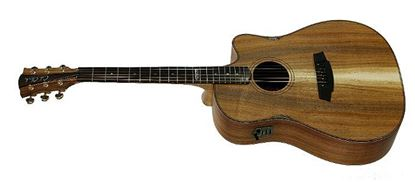 Cole Clark FL2 Lloyd Spiegel Signature Model Acoustic Guitar - All Blackwood - Rosewood Fretboard (CCFL2ECLSBLBLR)