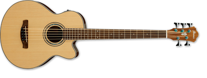 Ibanez AEB105E NT Acoustic Bass Guitar Natural High Gloss