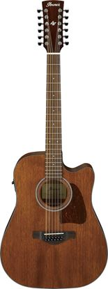Ibanez AW5412CE OPN 12 String Acoustic Guitar Open Pore Natural
