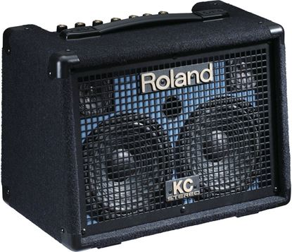 Roland KC-110 Battery Powered Stereo Keyboard Amplifier (KC110)