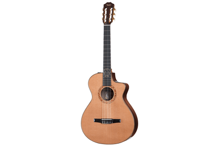 Taylor Signature Acoustic Guitars