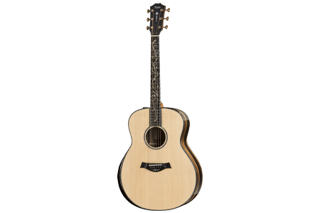 Taylor Presentation Series Acoustic Guitars