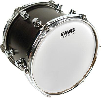 Evans UV1 Coated Drum Head - 10 Inch (B10UV1)