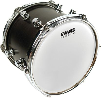 Evans UV1 Coated Drum Head - 13 Inch (B13UV1)