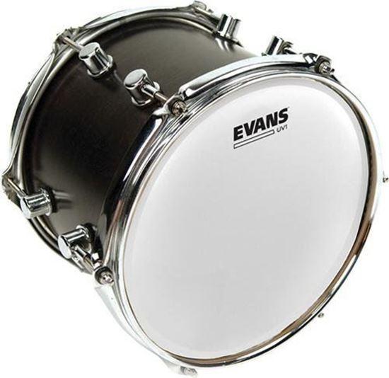 Evans UV1 Coated Drum Head - 16 Inch (B16UV1)