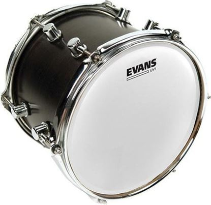 Evans UV1 Coated Drum Head - 8 Inch (B08UV1)