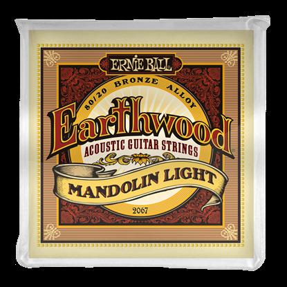 Ernie Ball 2067 Earthwood Mandolin Light Loop End 80 20 Bronze Acoustic Guitar Strings