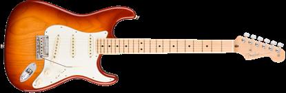 Fender American Professional Stratocaster Electric Guitar - Maple Neck - Sienna Sunburst