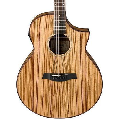 Ibanez AEW51 Artwood Exotic Spruce Acoustic Guitar Body
