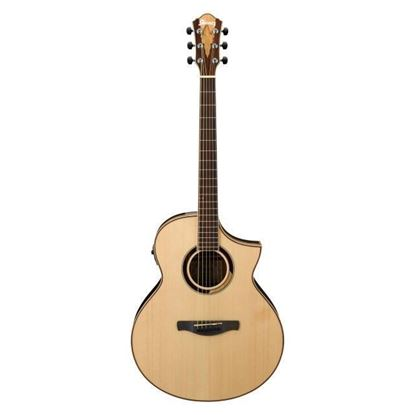 Ibanez AEW51 Artwood Exotic Spruce Acoustic Guitar Full View