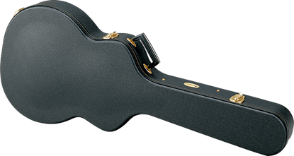 Ibanez AR-C PLYWOOD Guitar Case Full view