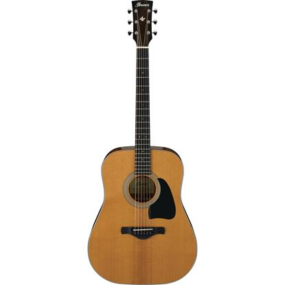 Ibanez AVD60 Artwood Vintage Acoustic Guitar Full View