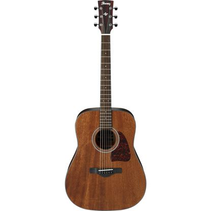 Ibanez AW54 Artwood Deadnought Acoustic Guitar Full View