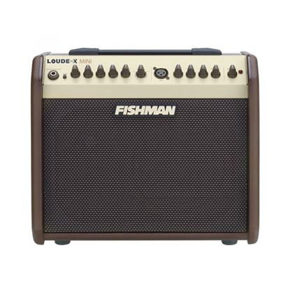 Fishman Loudbox Mini Guitar Amplifier Front