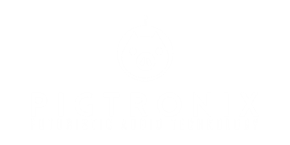 Musical instrument manufacturer Pigtronix