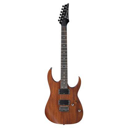 Ibanez RG421 Electric Guitar Full View