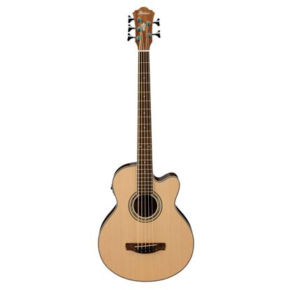 Ibanez AEB105E Acoustic Bass Guitar Full View