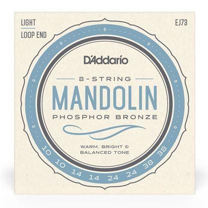 D''Addario EJ73 Mandolin Strings 10-38 Phosphor Bronze Light - Front