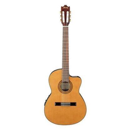 Ibanez GA5TCE Classical Guitar Full View