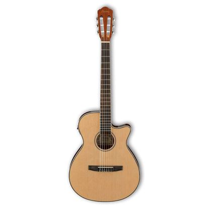 Ibanez AEG8TNE Thin Body Classical Nylon String Acoustic Guitar Full View