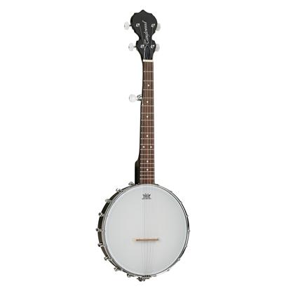 Tanglewood TWBT Traveller 5-String Banjo - Front