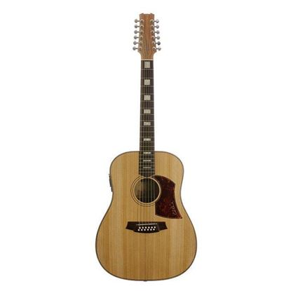 Cole Clark Fat Lady 2 Acoustic Guitar 12 String - Bunya Blackwood (CCFL2E12BB)