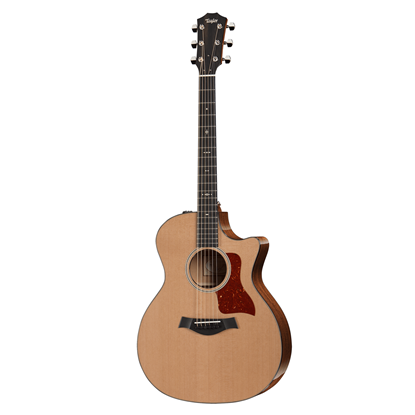 Taylor 514ce Spruce/Mahogany Acoustic Guitar Front