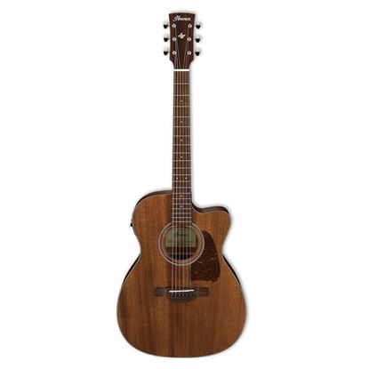 Ibanez AVC9CE Artwood Vintage Acoustic Guitar Full View