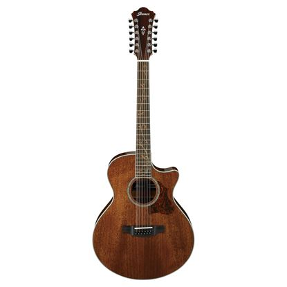 Ibanez AE2412 Acoustic Guitar 12 String - Natural High Gloss