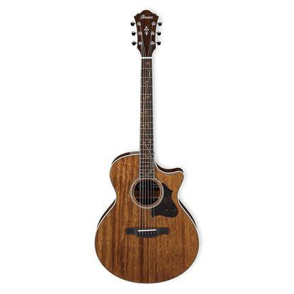 Ibanez AE245 AE Acoustic Guitar Full View