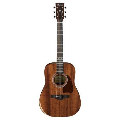 Ibanez AW54JR Acoustic Guitar Full View