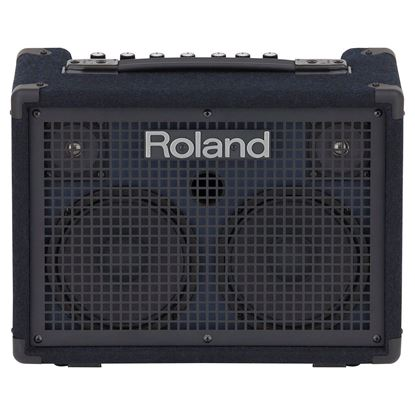 Roland KC-220 Battery Powered Stereo Keyboard Amplifier - front