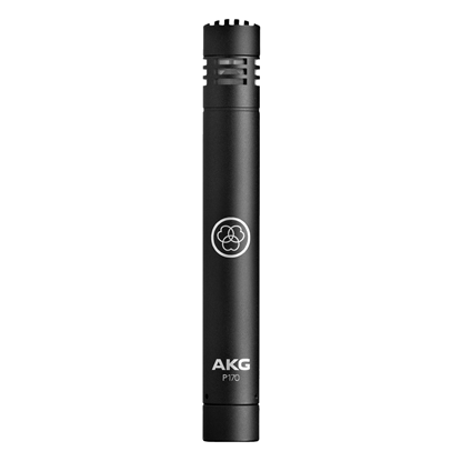 AKG P170 High Performance Instrument Condenser Microphone (P-170)