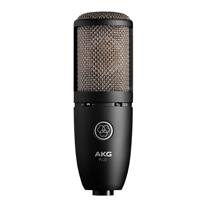AKG P220 High Performance Large Diaphragm True Condenser Microphone