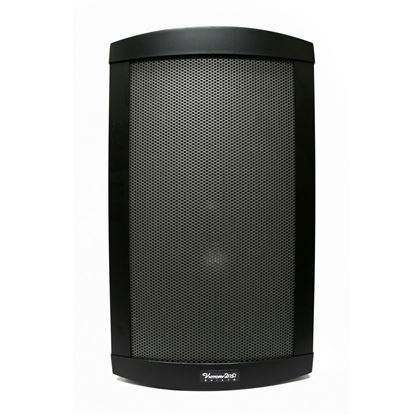 Chiayo Victory Portable PA System with Wireless Receiver (200 Watt)